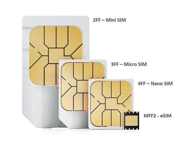 sims-formats-1